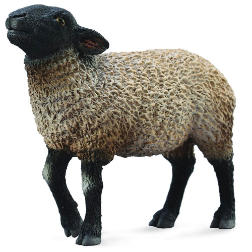 Suffolk Black faced Sheep CollectA