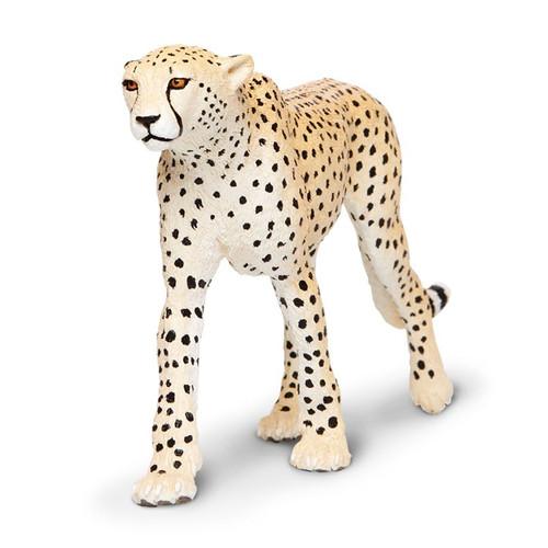 Cheetah Jumbo
