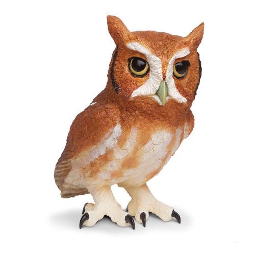 Eastern Screech Owl Jumbo