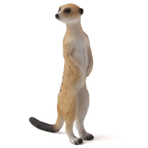 Meerkat Mojo