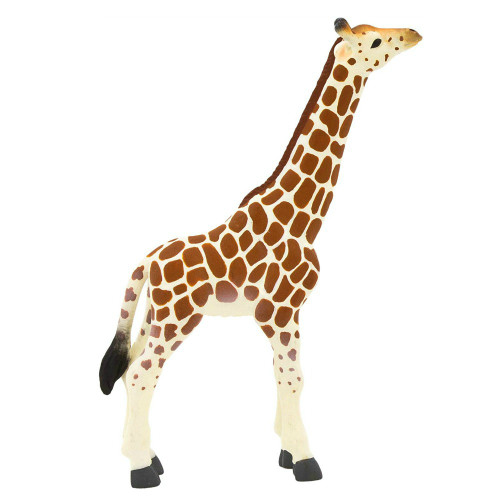 Giraffe Calf Mojo