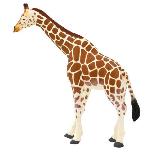Giraffe Mojo