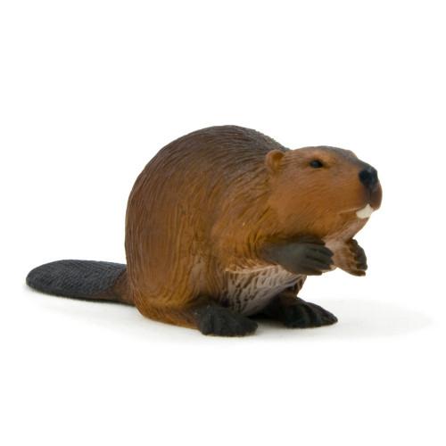 Beaver Mojo