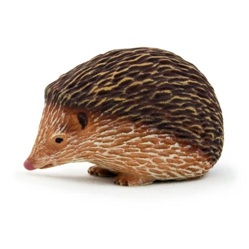 Hedgehog Mojo