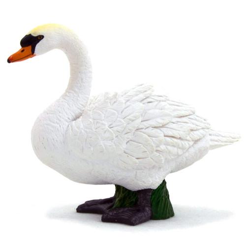 Mute Swan Mojo