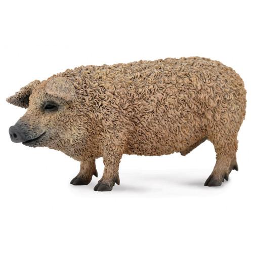 Hungarian Pig