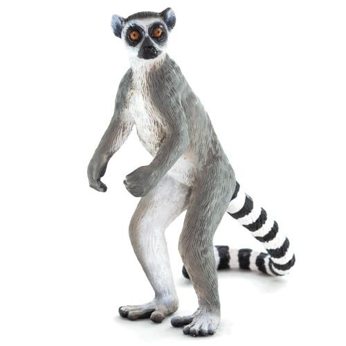 Ringtail Lemur Mojo