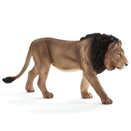 Lion Male Mojo