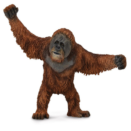 Orangutan CollectA