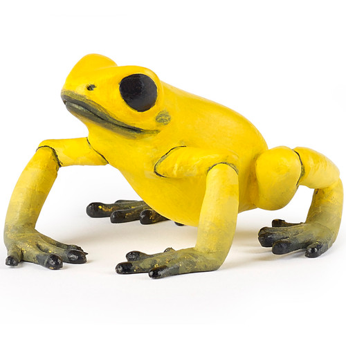 Equatorial Frog Yellow Papo