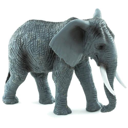 African Elephant 2015