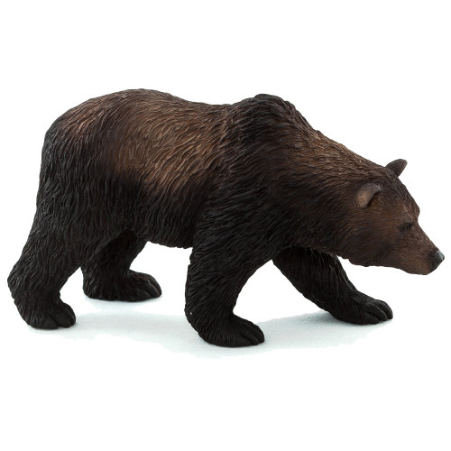 Grizzly Bear 2015