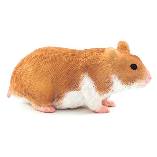 Hamster 2015