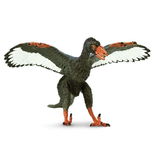Archaeopteryx Safari
