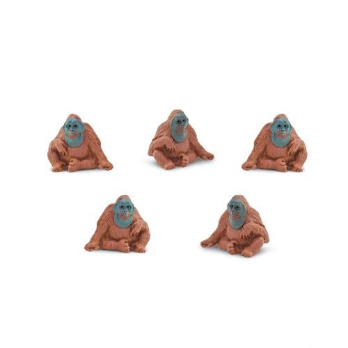Mini Orangutans