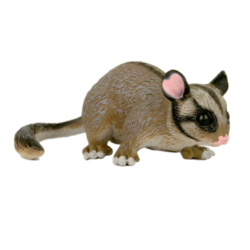 Large Leadbeaters Possum