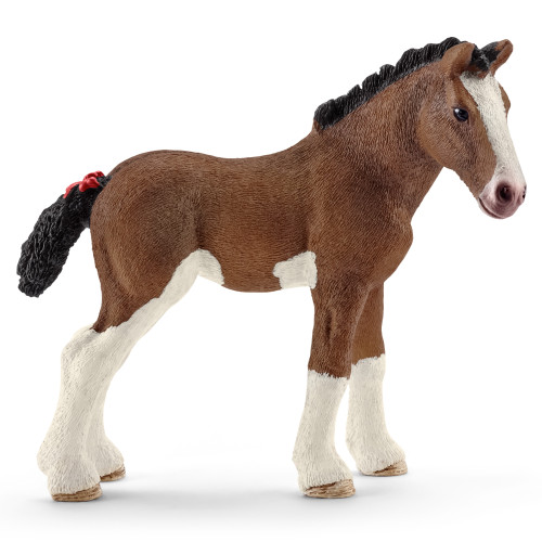 Clydesdale Foal 2016