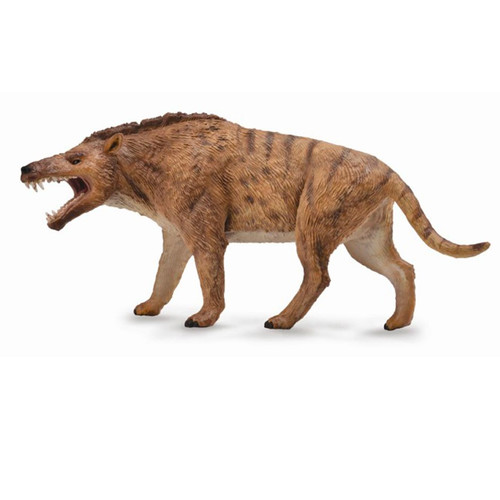 Andrewsarchus Deluxe Scale CollectA