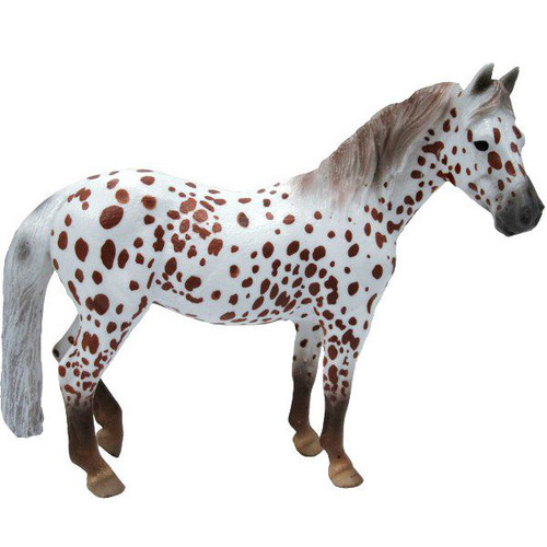 British Spotted Pony Mare Chestnut Leopard