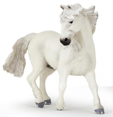 Camargue Horse White Mane