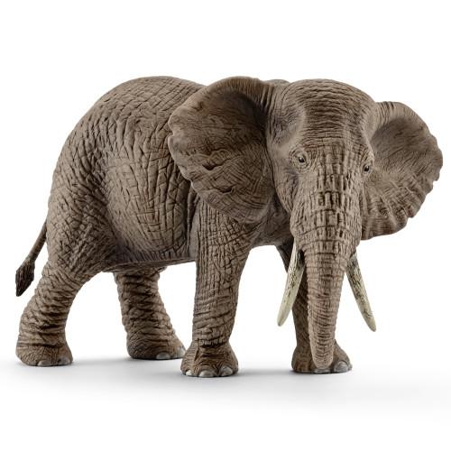Elephant African Female