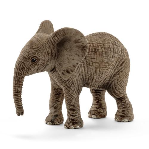 Elephant African Calf