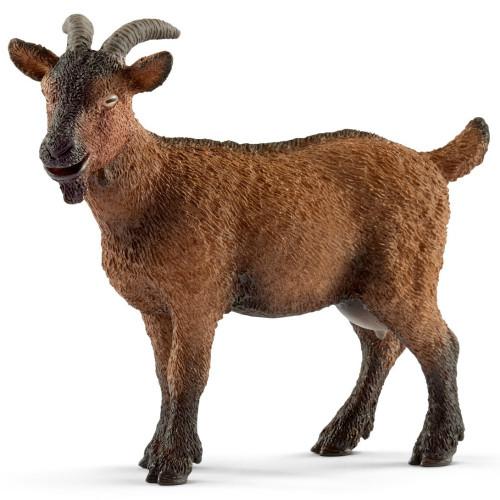 Goat 2017