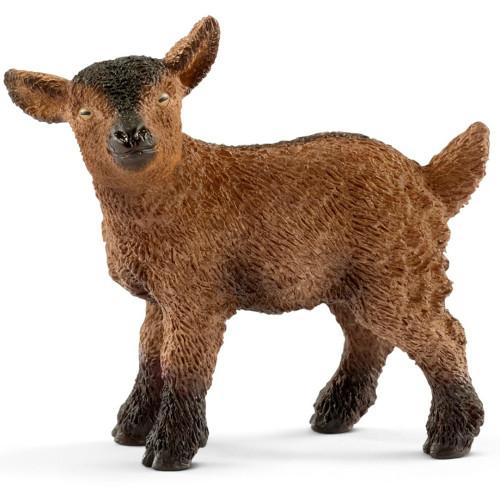 Goat Kid 2017