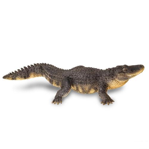 Alligator Jumbo