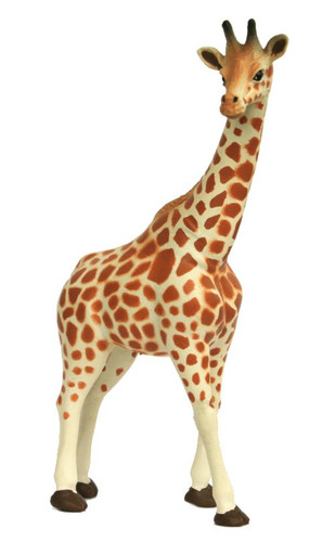 Giraffe SN