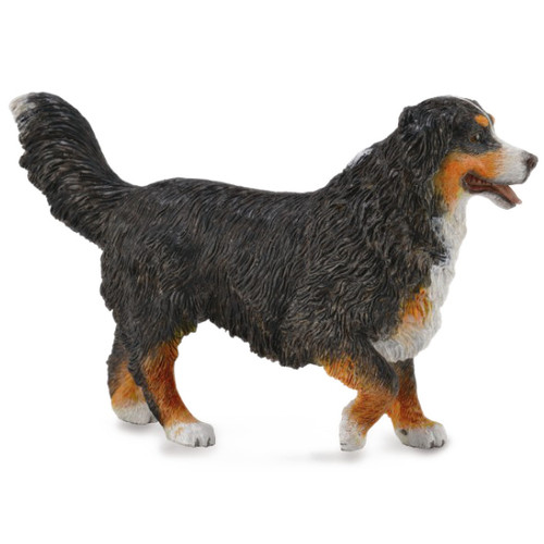 Bernese Mountain Dog CollectA