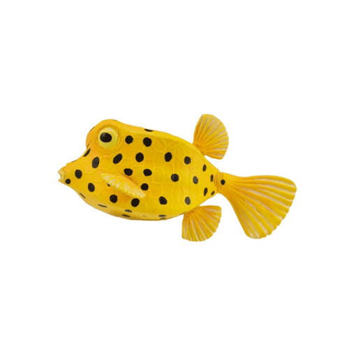 Boxfish CollectA
