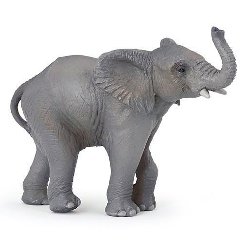 Young Elephant Papo