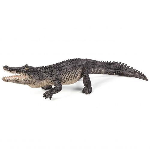 Alligator Mojo