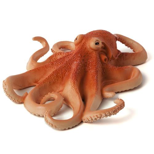 Octopus Mojo