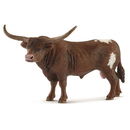 Texas Longhorn Bull 2018