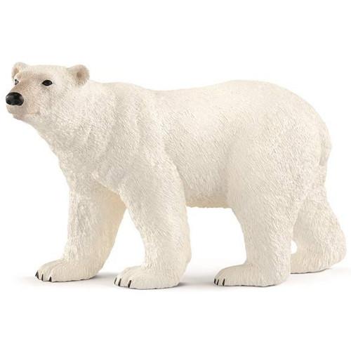 Polar Bear 2018
