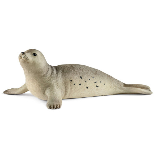 Seal 2018