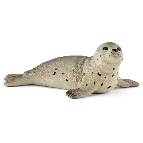 Seal Young