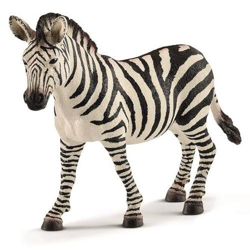 Zebra Mare 2018