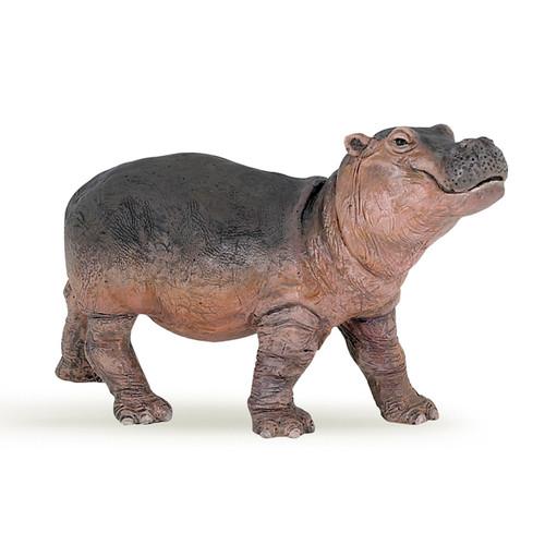 Hippo Baby Papo
