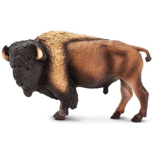 Bison Jumbo