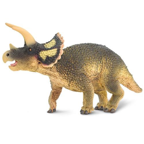 Triceratops Safari