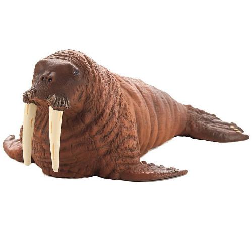 Walrus Mojo