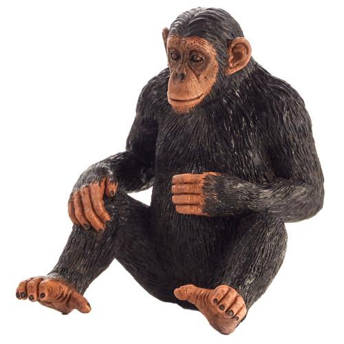 Chimpanzee Mojo