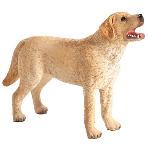 Labrador Mojo