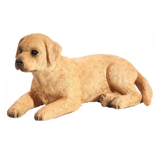 Labrador Puppy Mojo