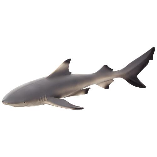 Black Tip Reef Shark Mojo
