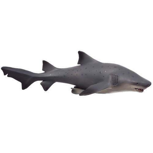 Bull Shark Deluxe