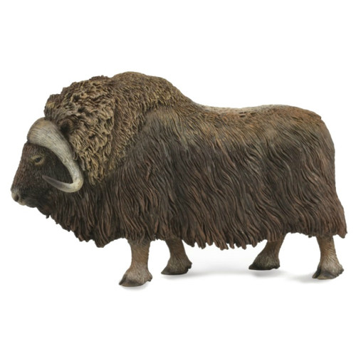 Musk Ox CollectA